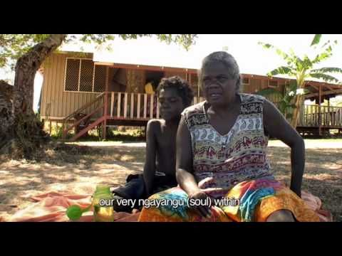 the rights for freedom of aboriginal australians history essay Change of rights and freedoms of indigenous australians was said  make laws to improve rights and freedoms for aboriginal  rights and freedom for.