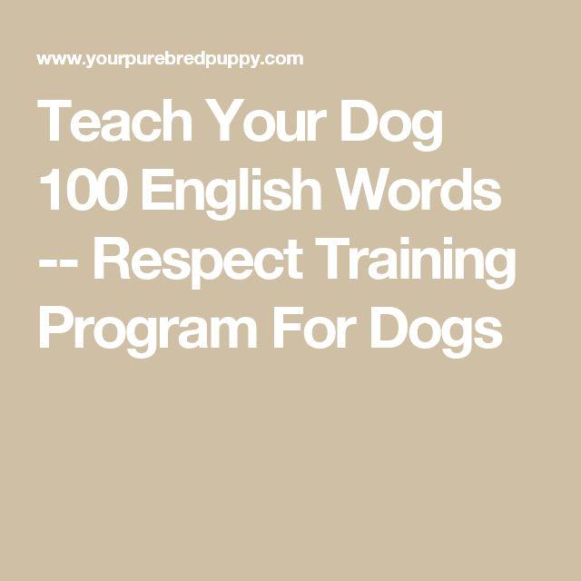 16 besten Reggie Bilder auf Pinterest | Hunde, Große hunde und Haustiere