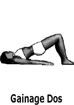 gainage dos renforcement musculaire et tonicité des dorsaux et des lombaires
