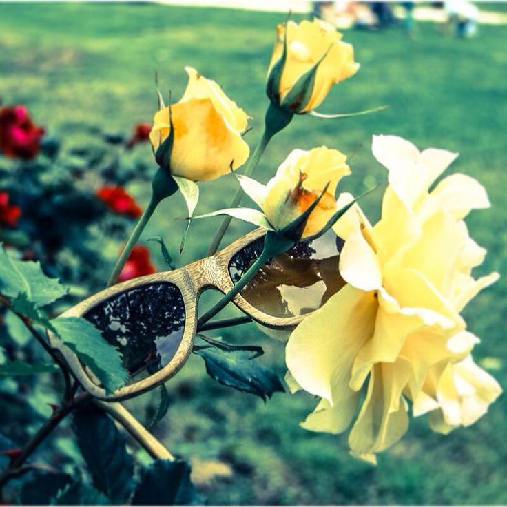 È sbocciata la ECOlution del bamboo #sunglasses #flower #rose #bamboo #raleri http://www.raleri.com/catalog/product_info.php?products_id=180