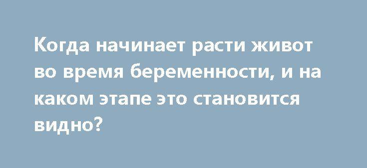 Когда начинает расти живот во время беременности, и на каком этапе это становится видно? http://budymamoi.ru/pregnant/symptoms/kogda-nachinaet-rasti-zhivot-vo-vremya-beremennosti.html