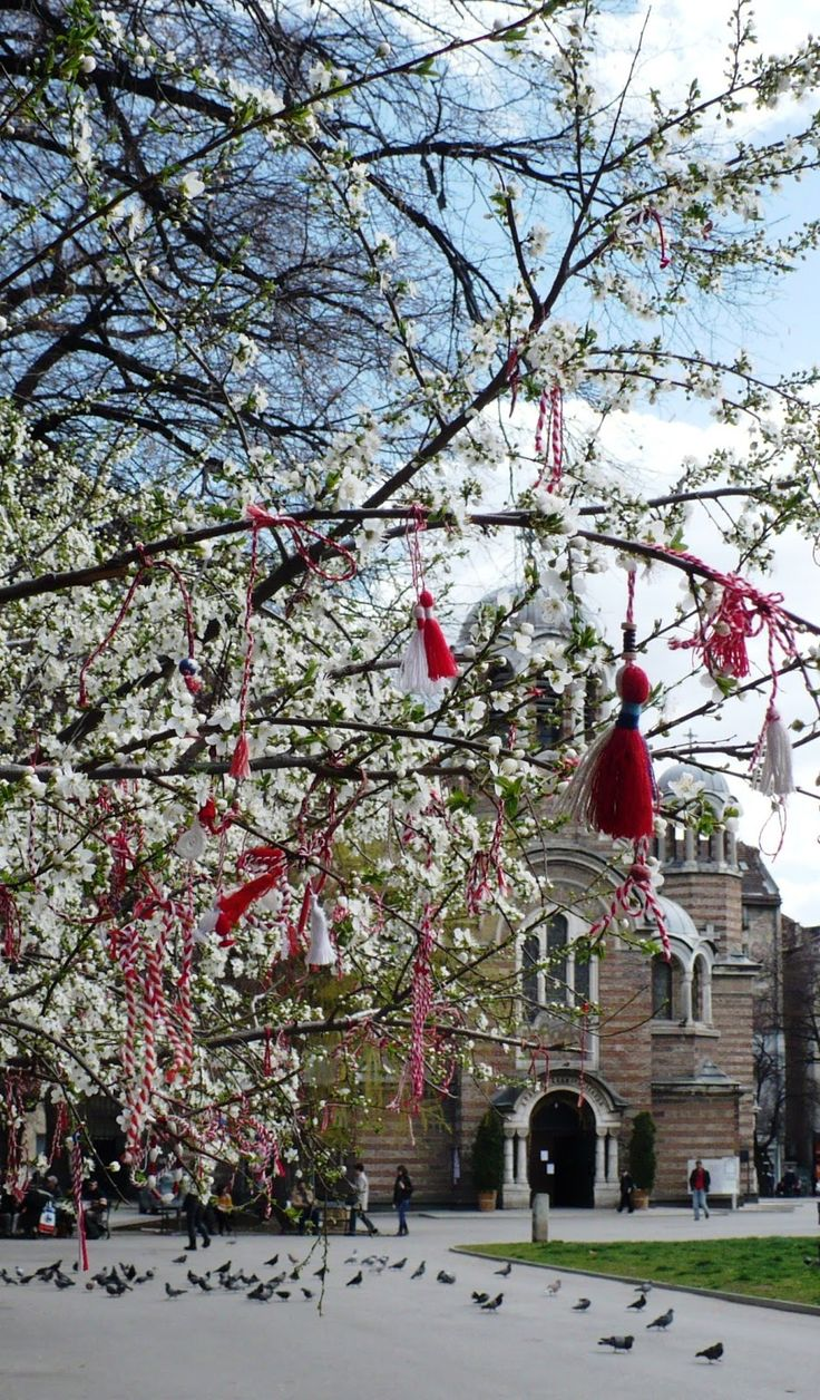 Welcome to my Bulgaria, martenitzi on a tree in front of St. Sophia cathedral in Sofia
