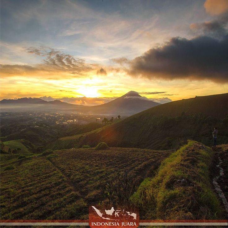 ______________________________________  #indonesiajuara mempersembahkan Provinsi JAWA BARAT ______________________________________  FOTO JUARA HARI INI  @firmanochim  Jika anda menggunakan kendaraan pribadi ambil jalan menuju Alun-Alun Tarogong lalu belok ke kanan menuju Garut Kota. Sekitar 500 meter dari Alun-Alun Tarogong kendaraan anda belokkan ke kanan menuju Samarang mengikuti petunjuk jalan menuju PT. Chevron. Setelah melewati pasar Samarang kendaraan anda belok ke kanan tepat di…