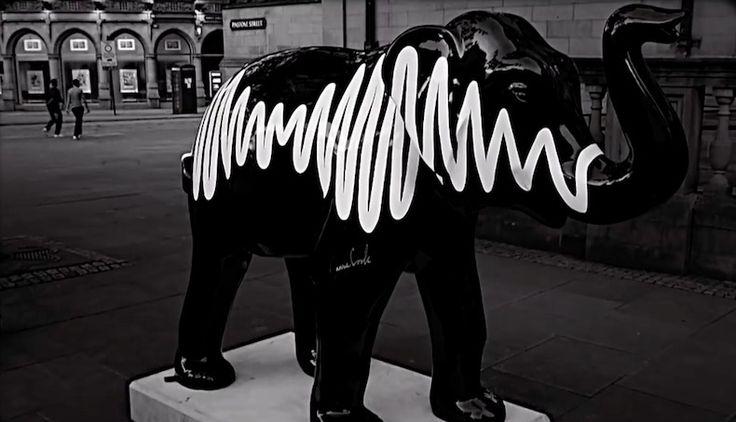 Arctic Monkeys dio a conocer la escultura con la que participación en el The Herd Of Sheffield, un evento que se lleva a cabo en Sheffield, Inglaterra, en donde esculturas de elefantes son puestos en la calle con la comitiva de recaudar fondos para un hospital infantil local.