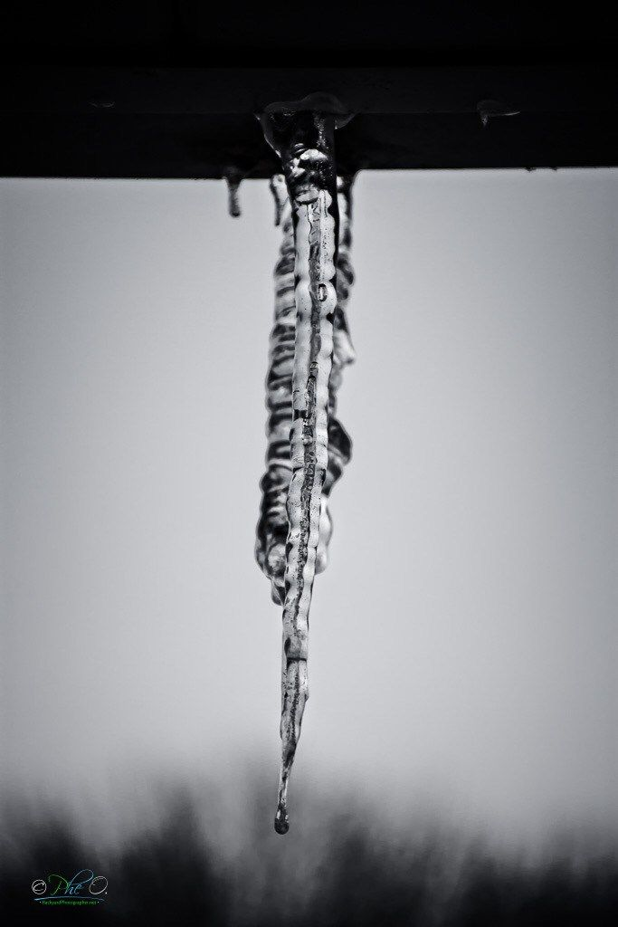 Outdoor Photography in winter - icicles