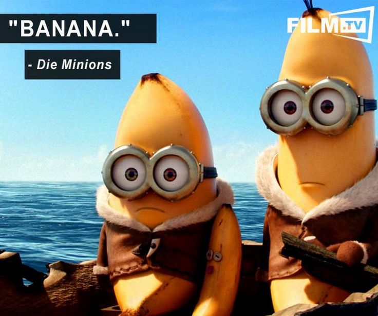Mehr Worte braucht es nicht!  Welche ist eure Lieblingsszene aus Die Minions?
