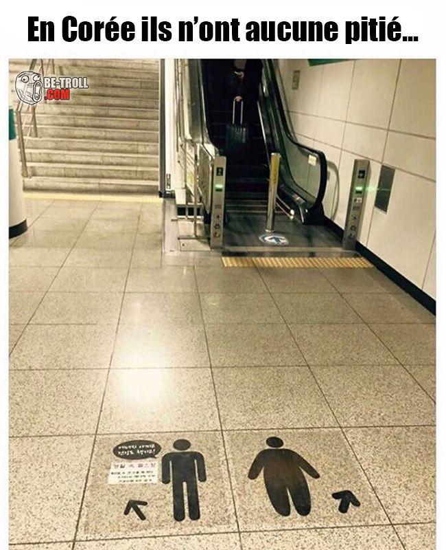 En Corée ils n'ont aucune pitié... - Be-troll - vidéos humour, actualité insolite