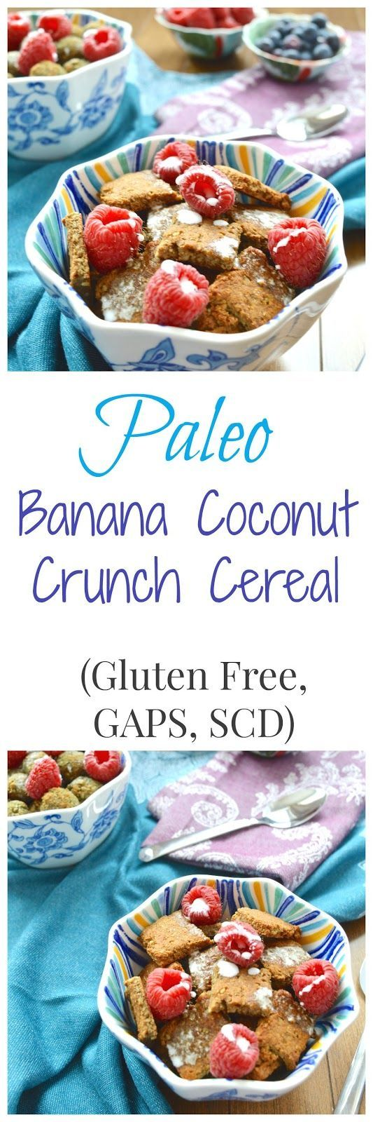 Pure and Simple Nourishment : Banana Coconut Crunch Cereal (Paleo, GAPS, SCD, Gluten Free, Dairy Free, Nut Free, Egg Free)