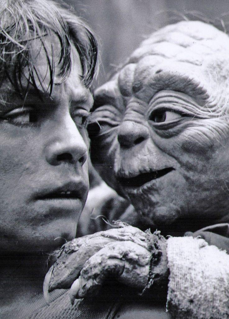 Yoda and Luke.