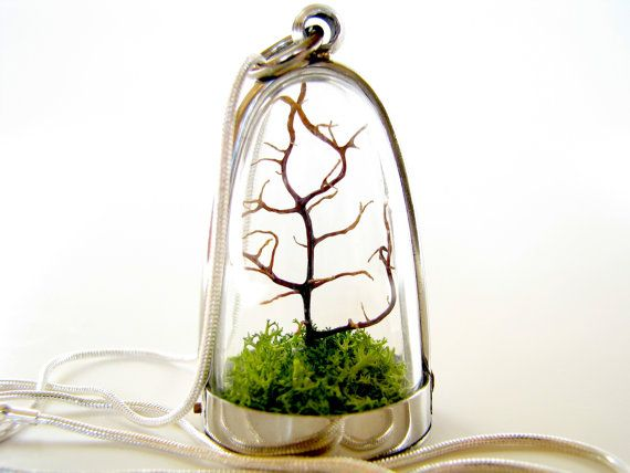 Modern Tree and Moss Terrarium Necklace. I have a necklace with a live cactus in it. This reminds me of that, but perhaps better. And hopefully less easy to kill than the cactus. (DON'T ASK ME HOW I MANAGE TO DO IT! Repeatedly.)