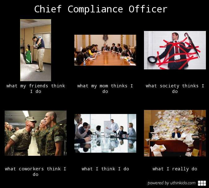 9 best images about compliance humor on pinterest keep calm perspective and dont - Corporate compliance officer ...