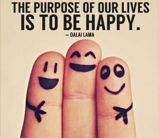 the purpose of our lives is to be happy,meme