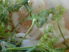 Senfgurken Rezept - Rezepte kochen - kochbar.de