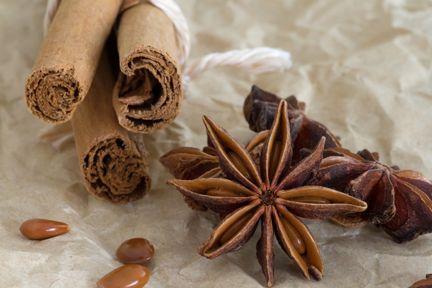 Anise Star and Cinnamon - By Alycia Rowe