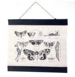 Wanddecoratie vlinder 60x45cm