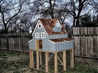 DC chicken coops   Redding CA Homebased company specializing in coops and homes for poultry