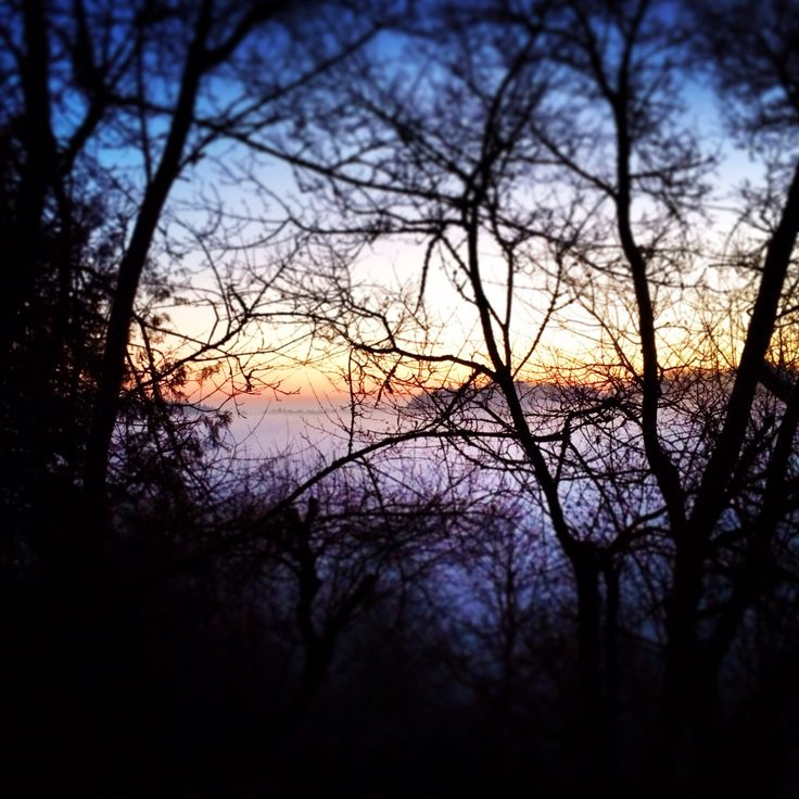 good morning Isar