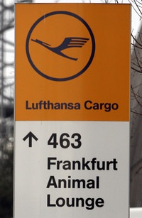 Fur Flies in High-Stakes Airlifts of Animals by #Lufthansa