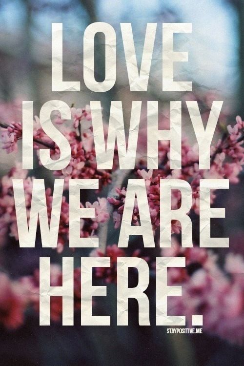 Love Is Why We Are Here Pictures, Photos, and Images for Facebook, Tumblr, Pinterest, and Twitter