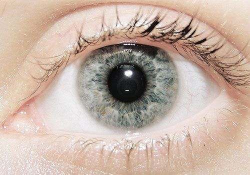 pics of eyes - Google Search