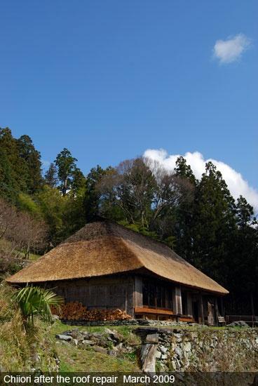 Chiiori, Shikoku, Japan