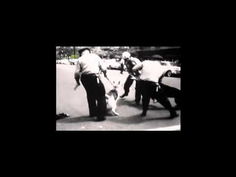 Assassination of Martin Luther King part 1 of 2 The Government was responsible...don't get it twisted !!