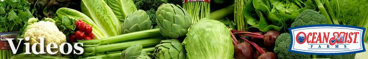 How to Bake an Artichoke Video from Ocean Mist Farms another baked artichoke recipe for variety and confirmation since I've never made artichoke myself