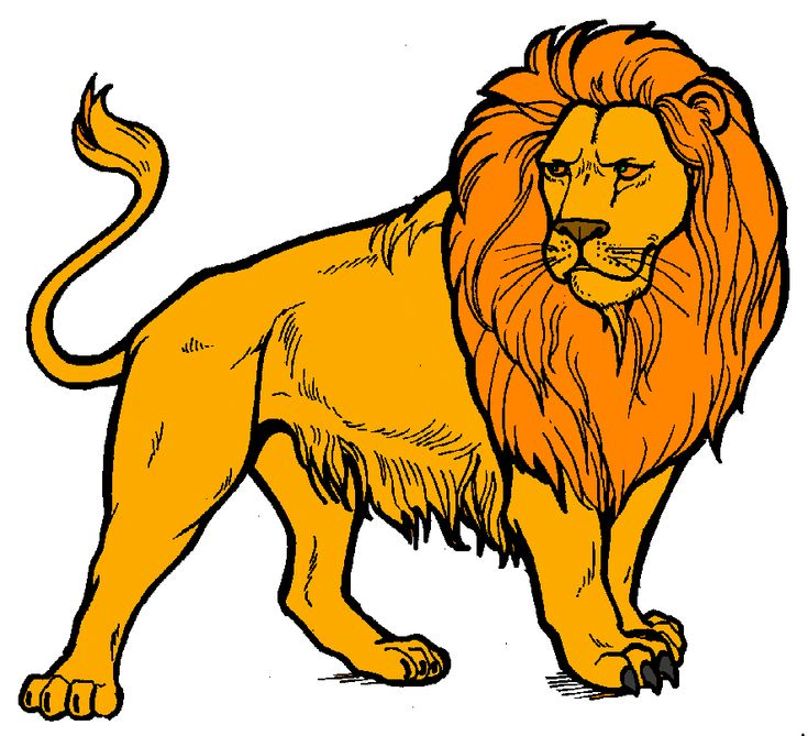 Image result for lions clipart