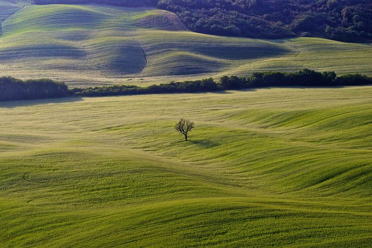 You will never forget Val d'Orcia landscapes, the sweet hills looks like waves moved by the wind.