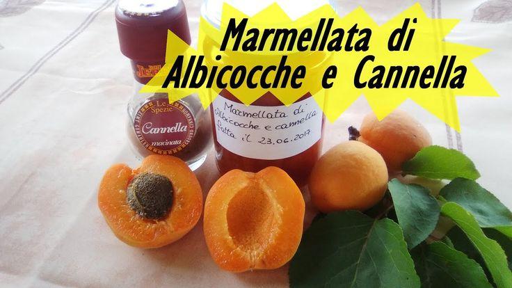 MARMELLATA ALBICOCCHE E CANNELLA FATTA IN CASA da Alex e PG