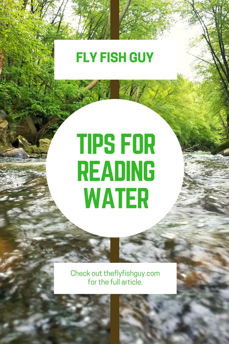 Great beginner tips and techniques for fly fishing starting with reading the water.  These tips will help you catch more fish