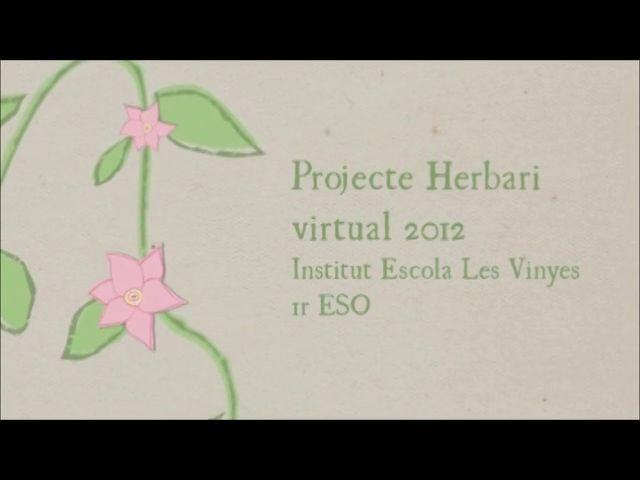 Un herbari virtual elaborat a partir del treball de naturalistes, cartògrafs, fotògrafs i reporters.  Un procés complex i difícil que ha suposat, entre altres moltes tasques, l'estudi de l'itinerari per a la sortida de camp, el treball cartogràfic a la web, la introducció a la fotografia científica i periodística, la selecció de mostres, la confecció d'un herbari virtual, la plantada d'arbres i plantes de bosc mediterrani amb Educació Infantil, i encara entrevistes, enquestes i conferències!
