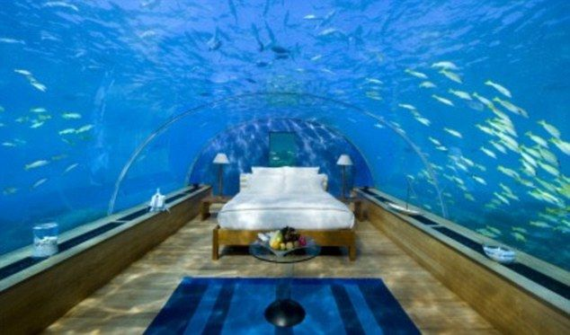 Aquarium Hotel Room.