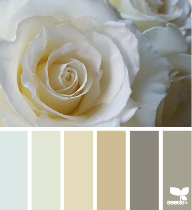 Your Color Palette DIY: Check Out The Top Color Scheme Generators: Design Seeds - For All Who Love Color