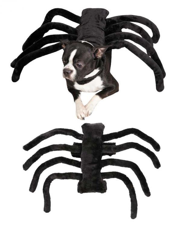 15 disfraces de Halloween para perros - ExpertoAnimal