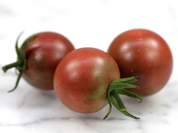 Black Cherry Tomato Considered By Many To Be The Best 640 x 480