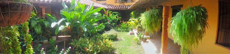 The garden in the Hotel Casa Amarilla, Mompos.