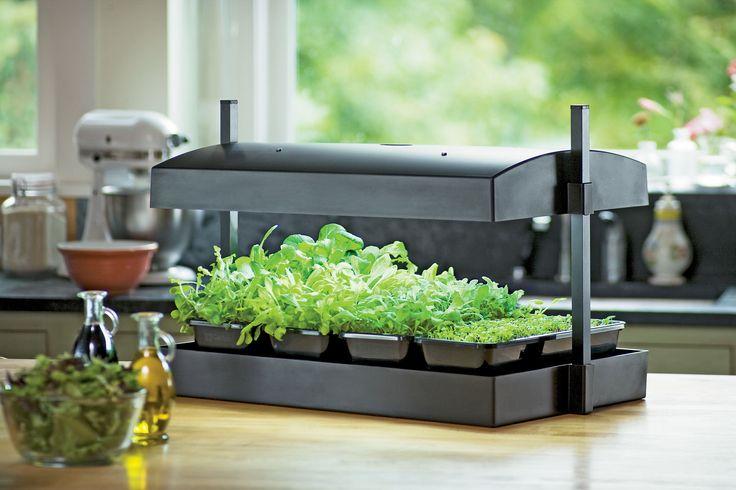 Indoor Herb Garden Kit My Greens Light Garden Gardener 39 S Supply Indoor Gardening