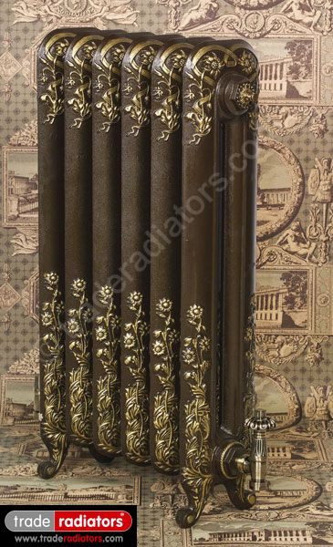 Montpellier Cast Iron Radiator in Old Penny with Gold Highlight