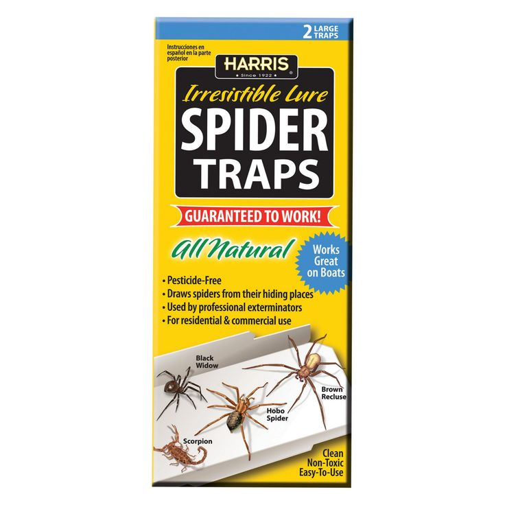 Harris All Natural Spider Traps - 2 Pack - STRP