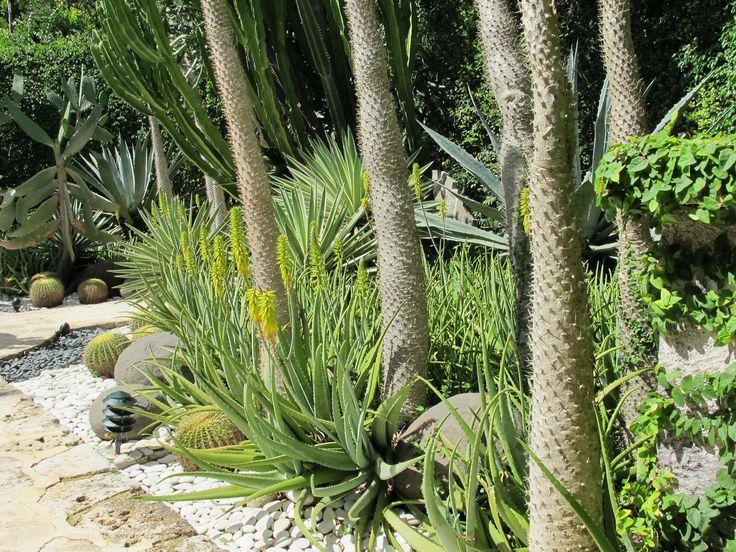 17 best images about jardines mediterraneos y xerof ticos