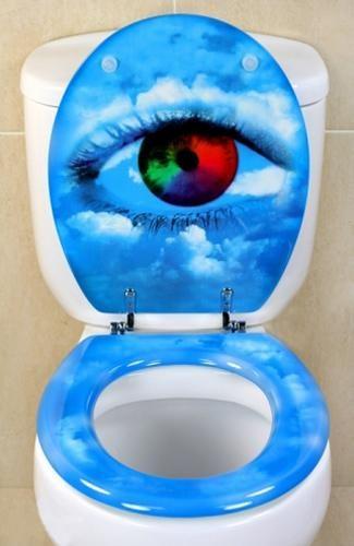 25 Best Ideas About Toilet Seats On Pinterest Kids Toilet Seat Toilet Sea