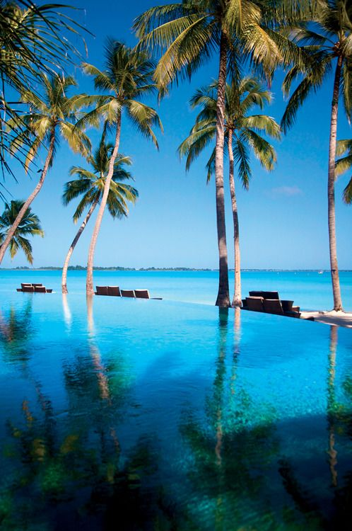 In case you hadn't noticed...I'm obsessed with the Maldives! This is Endheri Pool, Shangri-La's Villingili Resort & Spa, Maldives