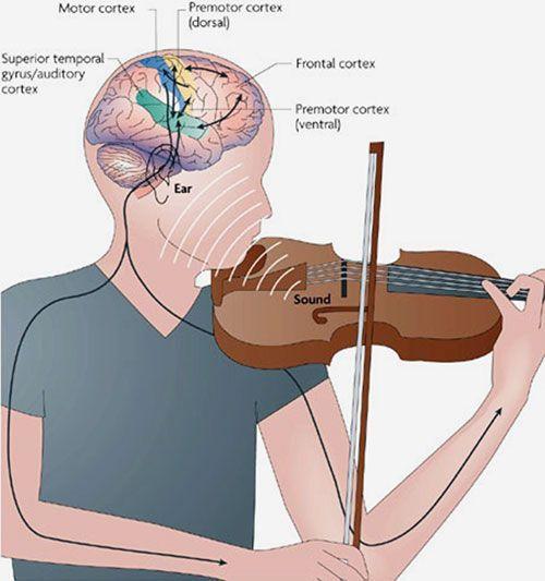 Музыкальное искусство , отражая жизнь, утверждает моральную красоту человека, ценность дружбы, верность долгу, раскрывает богатство душевного мира.
