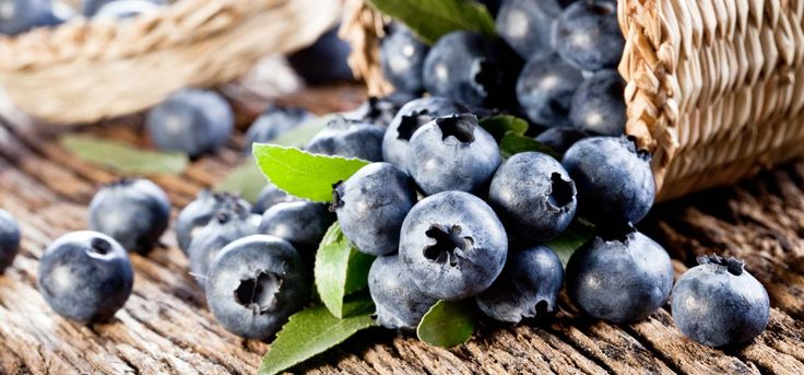 The delicious fruit blueberry is amazingly known for its benefits. Here is the list of the top 10 blueberry benefits for skin, hair
