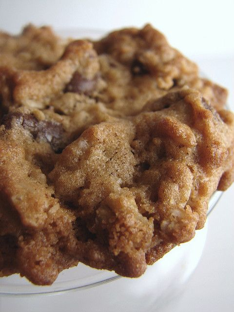 Peanut Butter Oatmeal Chocolate Chipsters Recipe — Dishmaps