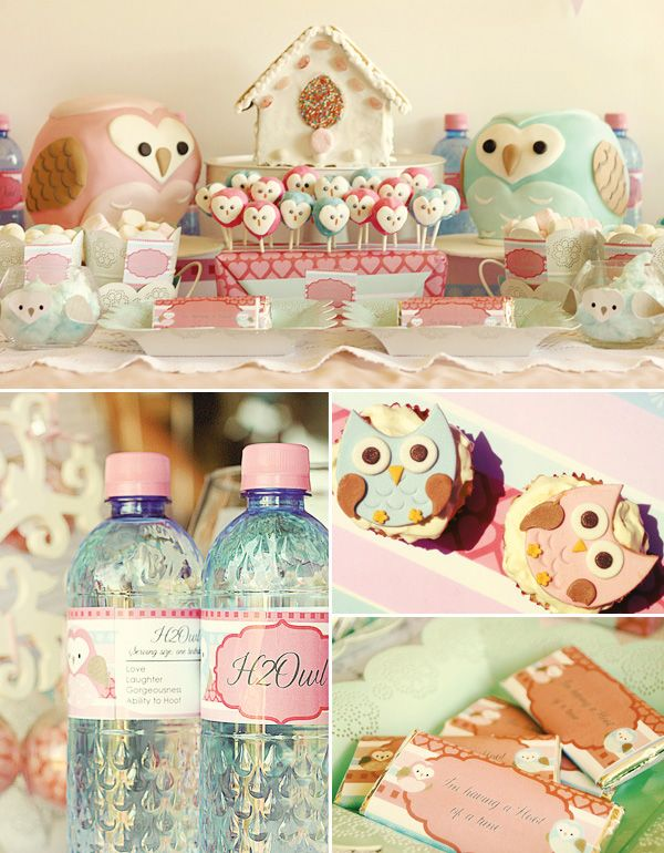 70 best owl baby shower images on pinterest owls barn owls and sweet dreamy owl party dessert table negle Choice Image