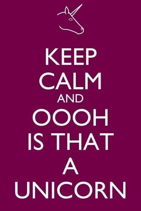 'keep calm and oooh is that a unicorn' LOL