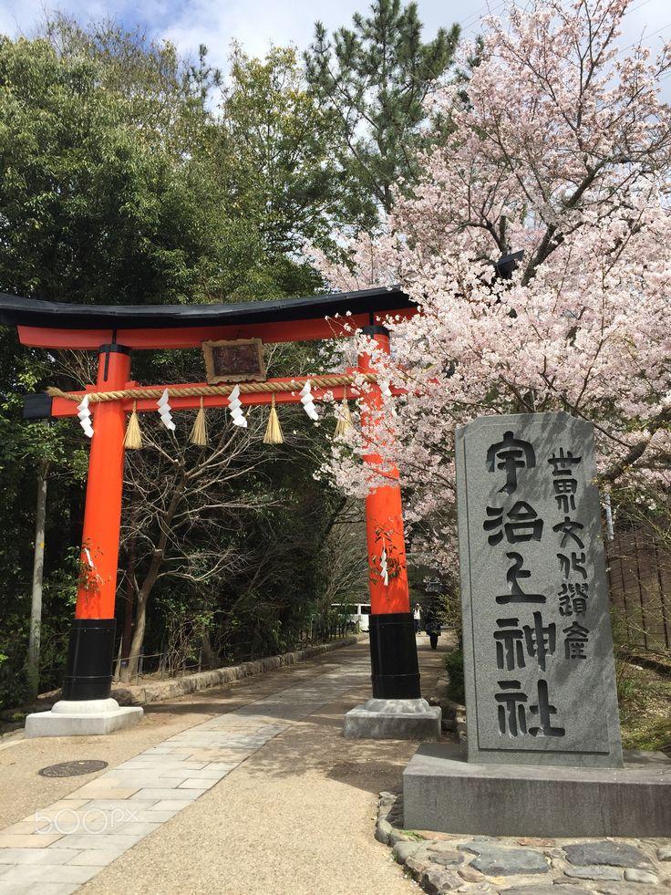 Uji - Ujigami Shrine in Kyoto, Japan
