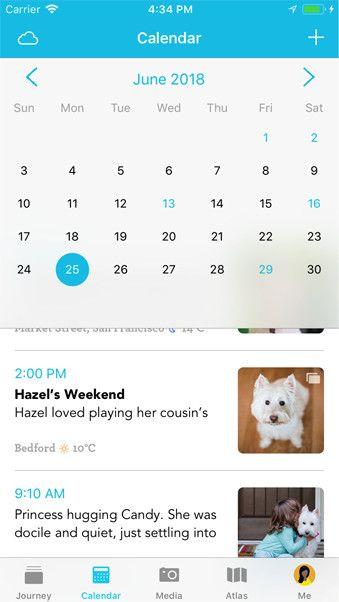 iOS diary app with calendar